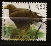 Belgique Belgie 2009 N° 3852 O Courant, Oiseau, Faune, Pygargue à Queue Blanche, Rapace, Grand Aigle De Mer, Haliète - Belgium