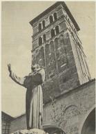 RIETI - IL CAMPANILE DEL DUOMO COL MONUMENTO A S.FRANCESCO-VIAGG.1958 - Rieti