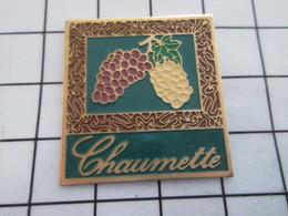 1216a Pin's Pins / Beau Et Rare / THEME : ALIMENTATION / CHAUMETTE GRAPPES DE RAISON NOIR ET BLANC - Lebensmittel