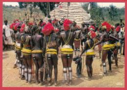 SÉNÉGAL-Danse D'initiation BASSARI *Animation* 2 SCANS *** - Senegal