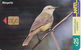 Nº 131 (CHIP ROJO) TARJETA DE URUGUAY DE UNA MARGARITA  (PAJARO-BIRD) - Uruguay