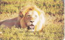 TARJETA DE ZIMBAWE DE UN LEON (LION) - Simbabwe