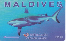 227MLDE - TARJETA DE MALDIVES DE UN TIBURON (SHARK) - Maldives