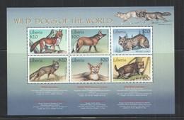 E1711 LIBERIA FAUNA ANIMALS WILD DOGS OF THE WORLD 1KB MNH - Honden