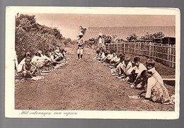 ± 1915 Netherlands Indies HET ONTVANGEN VAN RUPSEN (25-19) - Indonesia