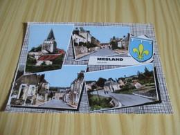Mesland (41).Vues Diverses. - France