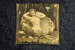 Photo Femme Nue Carte Photo Decoupee Photo Montage Femme Seins Nus Dans Un Coquillage - Fine Nude Art (...-1920)