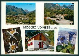 Udine Moggio Rifugio Capanna CAI Grauzaria FG R216 - Udine