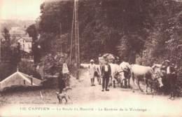 65 CAPVERN LA ROUTE DU BOURIDE LA RENTREE DE LA VENDANGE ATTELAGE DE BOEUFS - Francia