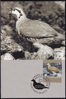 Bosnia (Croatian), 2003, Fauna, Bird, Maximum Card - Birds