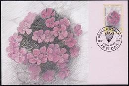 Bosnia (Croatian), 1999, Flora, Flowers, Maximum Card - Plants