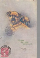MAUD WEST WATSON / YOUNG GRIFFONS BRUXELLOIS (CHIEN) - Other Illustrators