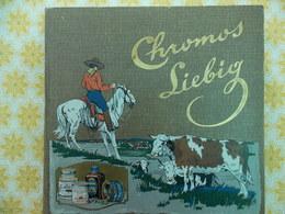CROMOS LIEBIG 1911/1912/1913/1914 - Liebig