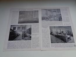 "Origineel Knipsel ( 2154 ) Uit Tijdschrift "" Ons Volk "" 1927 :  Dr. A. K. M. Noyons   Leuven  Louvain   Utrecht  4 Blz. - Vieux Papiers"