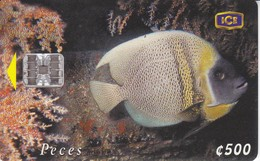 TARJETA DE COSTA RICA DE UN PEZ ANGEL (FISH) - Costa Rica