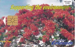 TARJETA DE MAURICIO DE 240 UNITS DE FLAME TREE (FLOR-FLOWER) MAURITIUS - Mauritius