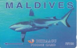 202MLDE - TARJETA DE MALDIVES DE UN TIBURON (SHARK) - Maldives