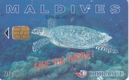 TARJETA DE MALDIVES DE UNA TORTUGA  (TURTLE) - Maldiven