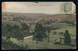 PHOTO France Album Saint Etienne Interchange Vache Flock - Saint Etienne
