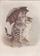 Thèmes  Chats Humanisés Sous Parapluie  Illustrateur H M - Katzen