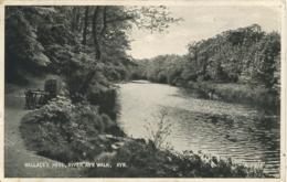 AYRSHIRE - AYR - WALLACE'S HEEL, RIVER AYR WALK  Ayr31 - Ayrshire