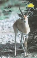 Oman - Gazelle - 44OMNB - Oman