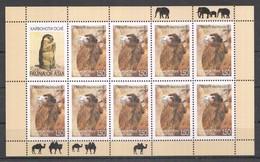 F1076 2009 TAJIKISTAN WWF FAUNA OF ASIA ANIMALS CAMELS CAMELUS BACTRIANUS 1KB MNH - Postzegels