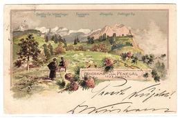 PANORAMA VOM PENEGAL - Carte Colorisée / Colored Card - Altri