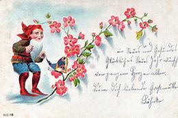 DC552 - Zwerg Motiv Schmetterling Blumen Nowawes 1911 - Fiabe, Racconti Popolari & Leggende