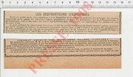 Presse 1908 Ecrevisses Rouges Destructeur D'écrevisse Crustacés .... ça Vaut Mieux Que D'aller Au Café  229X - Old Paper