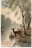 ANIMAUX 199 : Précurseur ; Biche , Faon - Animals