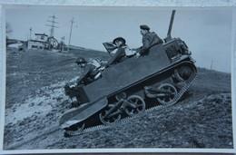 Photo ABL BREN CARRIER Chenillette Circa 1945-50 Belgische Leger Armée Belge Militaria - Oorlog, Militair