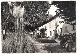 LAMALOU LES BAINS : HÔTEL DES BAINS - Lamalou Les Bains