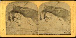 Photographie Stéréoscopique Le Lion De Lucerne  Gabler Photographe à Interlaken   9 Par 17 Cm - Photos