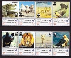 Iran, 2019. Fauna, WWF - W.W.F.