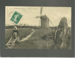 56 St Pierre Quiberon L'entrée Aux Alignements Du Moulin édit. Villard N° 6031 Menhir Femme à La Brouette Moulin à Vent - Autres Communes