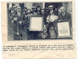 Orig. Knipsel Magazine Tijdschrift - Wolfsdonk - Gouden Bruiloft Echtpaar L. Verbruggen X R. Pauwels - 1931 - Documentos Antiguos