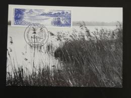 Carte Maximum Card Parc Naturel De La Brenne Rosnay 36 Indre 1989 - 1980-89