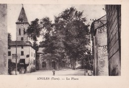 81-014...........ANGLES - France