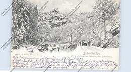 NIEDER-SCHLESIEN - SCHREIBERHAU / SZKLARSKA POREBA, Partie Am Weg Von Petersdorf, Pferdeschlitten, 1903 - Schlesien