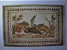 TUNISIE - TUNIS - Musée Du Bardo - Mosaïque Du Musée D'El Jem - Tunisia