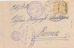 1944  Raro SERVIZIO ANAGRAFE BESTIAME Da Sancipirrello Per Bivona Con Amgot Da 25c - Franc - 1900-44 Vittorio Emanuele III