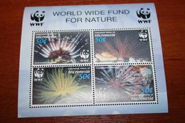 WWF Marine Life Micronesia Rare Mini-block - W.W.F.