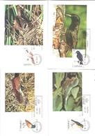 MAXIMAS ESPAÑA 1985 - Cuckoos & Turacos