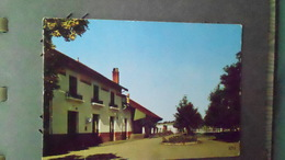 81CARTE DE CORDESN° DE CASIER 982 WWVIERGECARTE 150X105 - Autres Communes