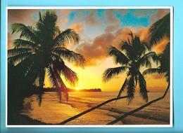 POLYNESIE ---coucher Du Soleil Sur MAHINA---voir 2 Scans - Polynésie Française