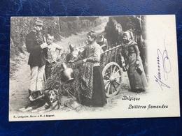 """""""Laitière Flamande Avec Attelage De Chien Reçoit Un PV """"(2312)--1902 - Artisanat"""