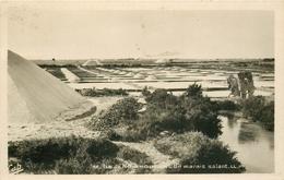 Photo Cpsm 85 ILE DE NOIRMOUTIER. Un Marais Salant Avec Mulons De Sel - Ile De Noirmoutier