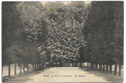 L130A_289 - Bomy, Par Fléchin - Les Tilleuls - France