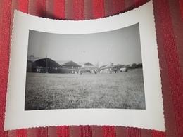 Photo Originale Avion Aviation Hangars Aeroport Annee Circa 1940-60 UN AEROPORT AU MAROC? - Aviación